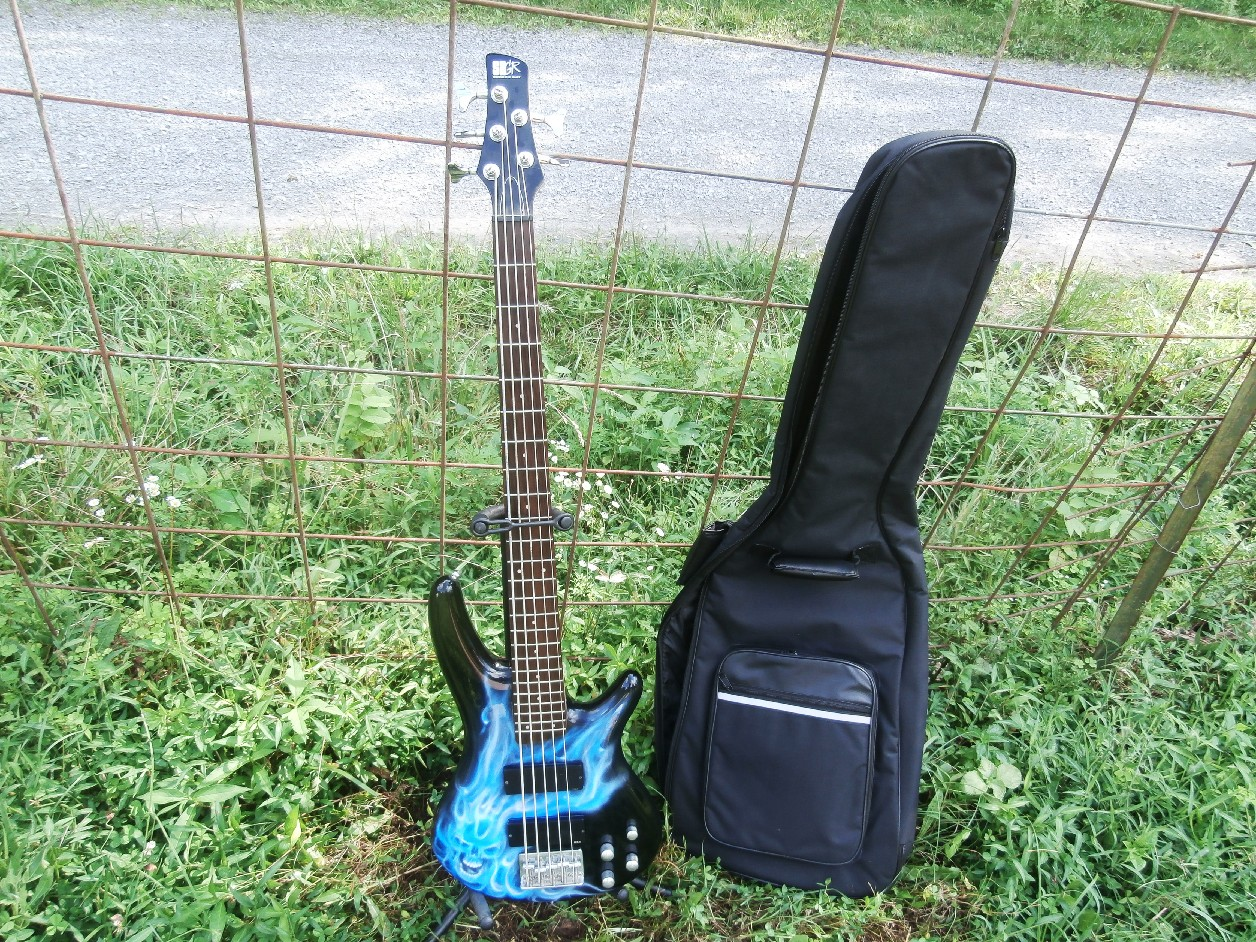 One of a Kind Custom Airbrushed Korean Ibanez SR305DX 5 string Upgraded pots W/ Free Deluxe Gigbag